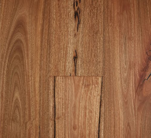 Rustic Spotted Gum Engineered Timber Flooring