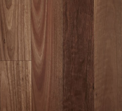 Smooth Semi-Gloss Spotted Gum Engineered Timber Flooring