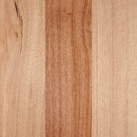 Tas Oak Australian Timber flooring available in Perth at Floors By Nature